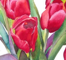 Springtime Red Tulips! Sticker