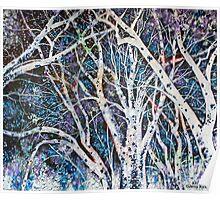 'ILLUMINATED TREES'  Poster