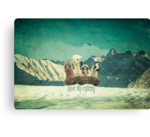 Never Stop Exploring The Snow Canvas Print