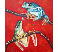 tree frogs in love Photographic Print