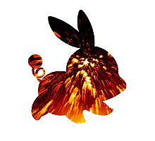 Tepig used Incinerate Photographic Print