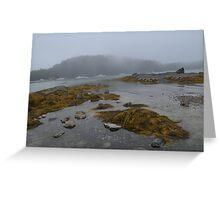 Seal's Cove Greeting Card