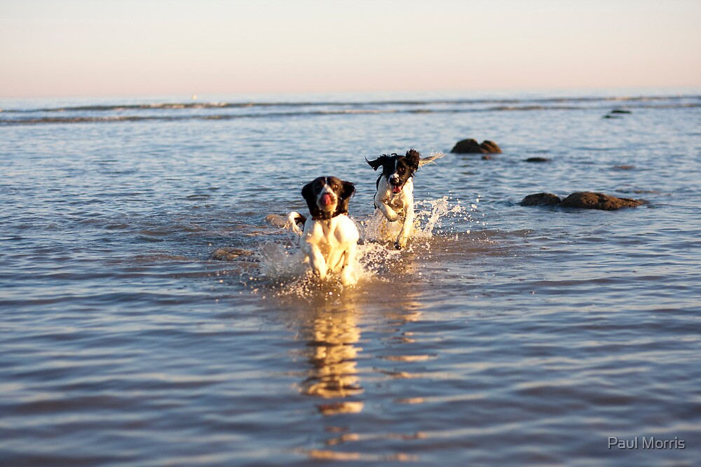 benson and jess at cooden Beach by Paul Morris
