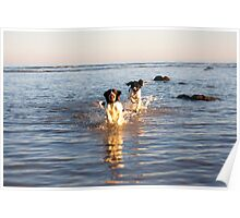 benson and jess at cooden Beach Poster