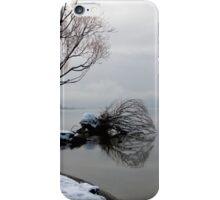 Winter Lake-Shore 02 iPhone Case/Skin