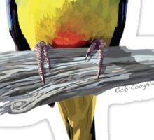 Orange-bellied Parrot sticker Sticker