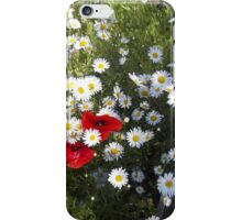 Flanders Poppies and Ox-Eye Daisies iPhone Case/Skin