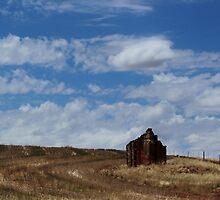 Ruins down on the farm by myraj
