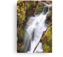 A Rush of Water Canvas Print