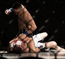 MMA3 by ArchivePhoto