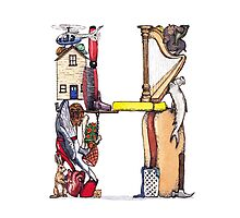 """The Letter """"H"""" Photographic Print"""