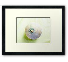 Muskmelon VRS2 Framed Print