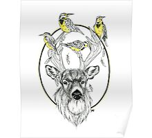 Buck and Meadowlarks  Poster