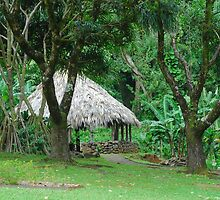 Traditional Hawaiian Hut by Kaleo55