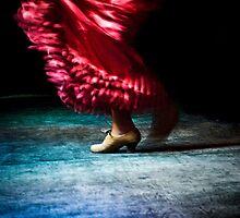 Flamenco by Teresa Jozef