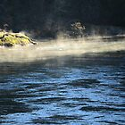 Cowichan River in Winter by Akana
