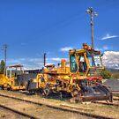 Stalled No Work Cooma Railway  by Kym Bradley