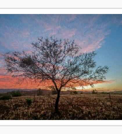 Outback Sunset (ED2) Sticker