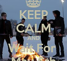 Fall Out Boy's new album wait by hiatussurvivor