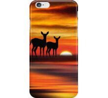 Sunset Point 9 iPhone Case/Skin