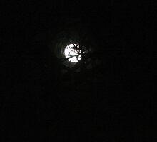Night light by maubreyds