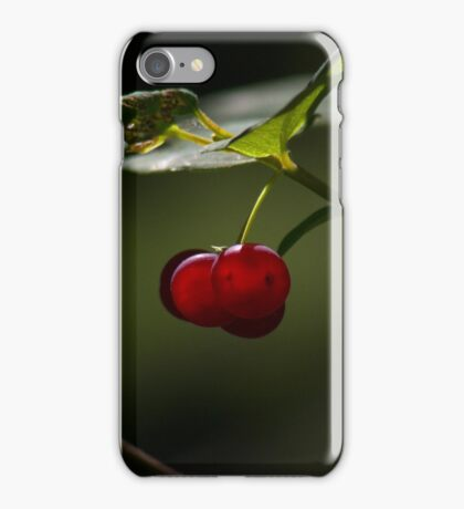 Red Summer Berries iPhone Case/Skin