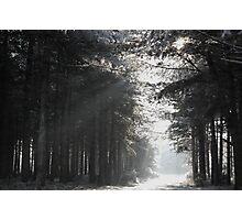 Black and White Snowscape Photographic Print