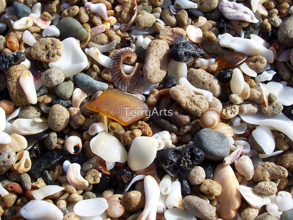 Honey Amber Sea Glass and Tiny Seashells and Pebbles by Teresa Schultz