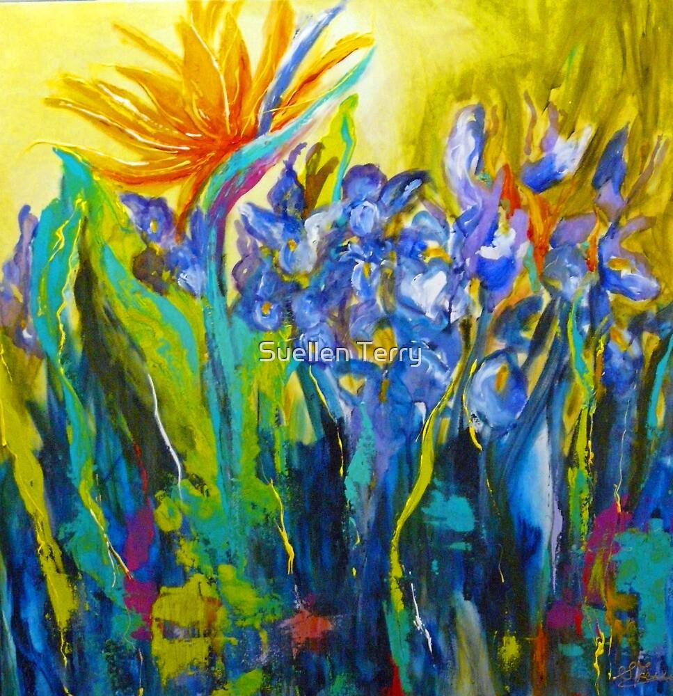 Bird of Paradise  by Suellen Terry