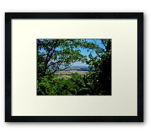 Through the Leaves Framed Print
