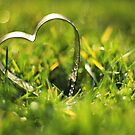 Heart Sparkles by Tracy Friesen