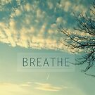 Breathe by sandra arduini