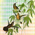 Vintage Hummingbird Digital Art by angelandspot