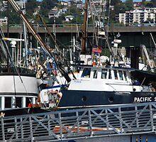Fishing Fleet by John Schneider