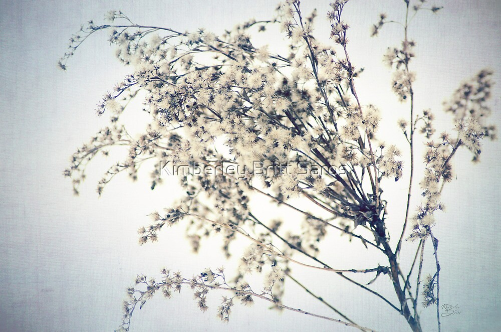 Winter's Chill by KBritt