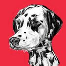 Dalmatian Red by JamesPeart