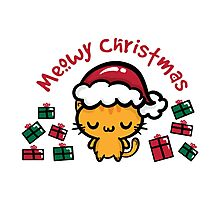 Santa Claws Photographic Print
