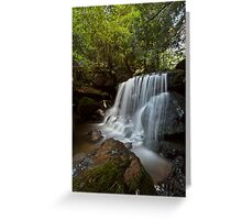 Leura Falls, NSW Greeting Card