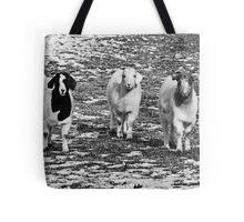 Three Goats B&W Tote Bag