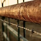 Cattle Fence by LILKULKA
