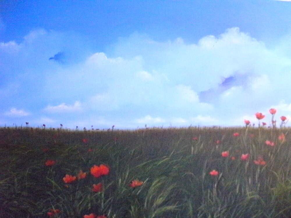 Flores no campo by annabrazao