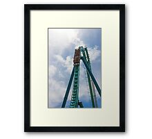 Take the Plunge Framed Print
