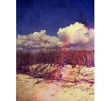 South Carolina Sand Dunes Photographic Print