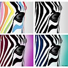 zebra collage  by mark ashkenazi