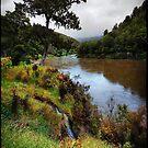 Buller river, NZ by andreisky
