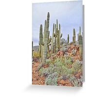 The Tall Ones III Greeting Card