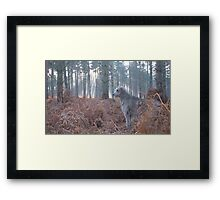 Hazard surveys his forest Framed Print