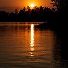Golden Sunrise by Rick McKee