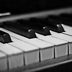 Piano Keys [Black & White] by Susan Drysdale