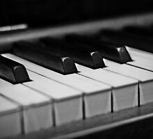 Piano Keys [Black & White] by Susan Drysdale